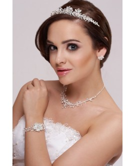Mooie sieradenset met tiara, ketting en oorbellen
